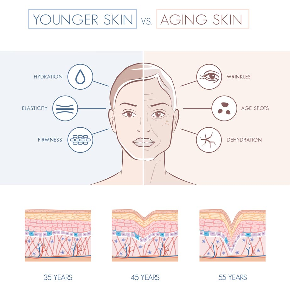 How Long Does It Take For Collagen Supplements To Work ...