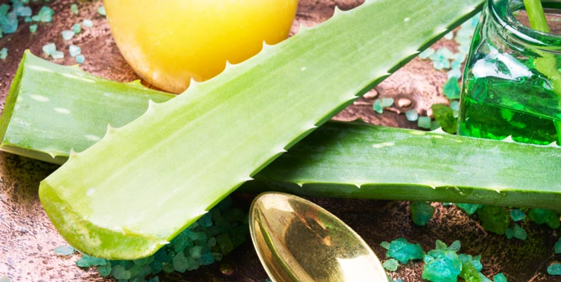 Aloe Vera is rich in antioxidants which is a perfect ingredient to detox your body